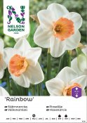 Pingstlilja Narcissus Rainbow 15kg