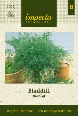 Dill, Blad-, 'Bouquet'
