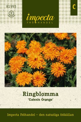 Ringblomma, 'Calexis Orange'