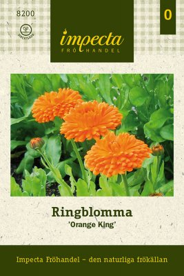 Ringblomma, 'Orange King'
