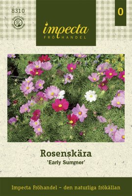 Rosenskära, 'Early Summer'