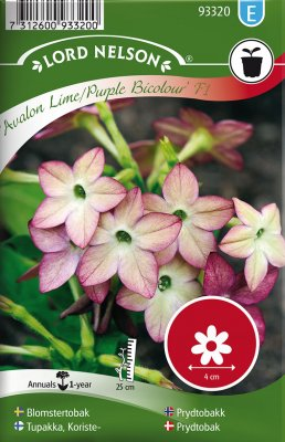 Blomstertobak, 'Avalon Lime/Purple' F1