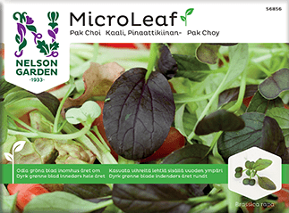 Micro Leaf, Pak Choi, 'Red Wizard'
